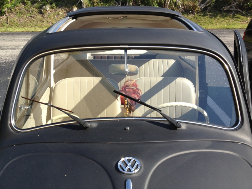 VW Beetle Windshield Replacement and Window Chrome Install